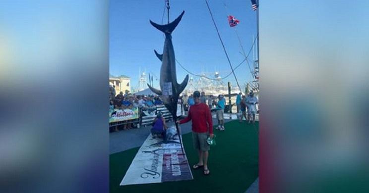 Un pescador se embolsa más de 300.000 euros tras capturar este pez récord