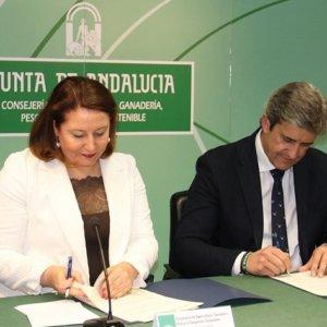 La Montería y la Rehala a un paso de ser declaradas Bien de Interés Cultural en Andalucía gracias a la FAC