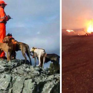 Un incendio calcina las perreras de este rehalero tras salvar a sus 120 perros y los cazadores hacen un llamamiento para ayudarlo