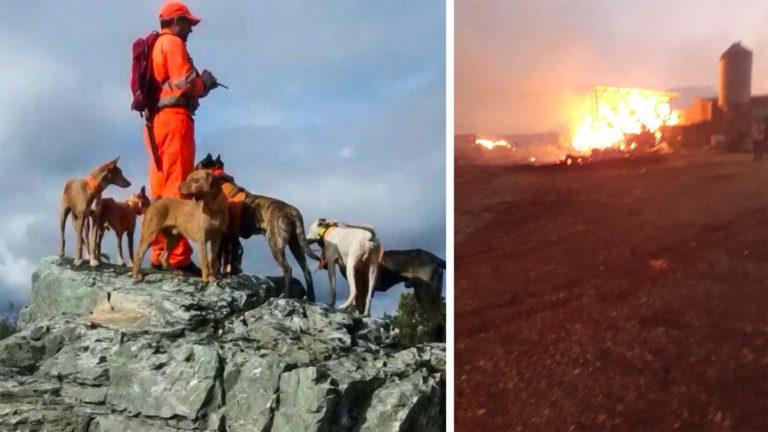 El rehalero, durante una jornada cinegética; a la derecha, el incendio.
