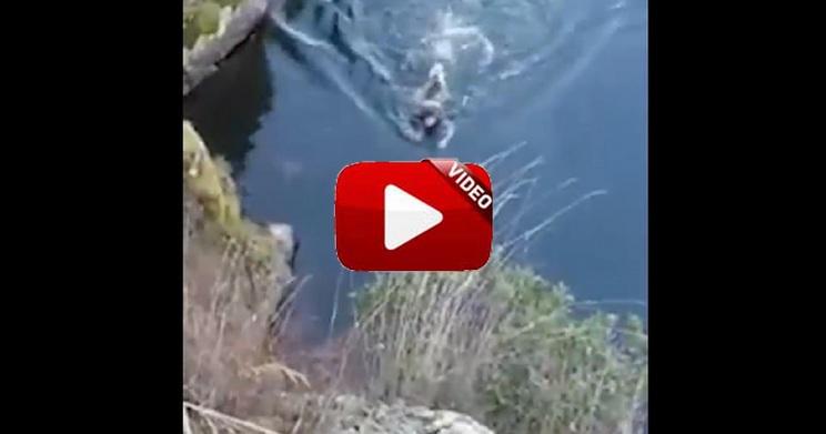 Un perro queda atrapado y el rehalero se tira al río para salvarlo