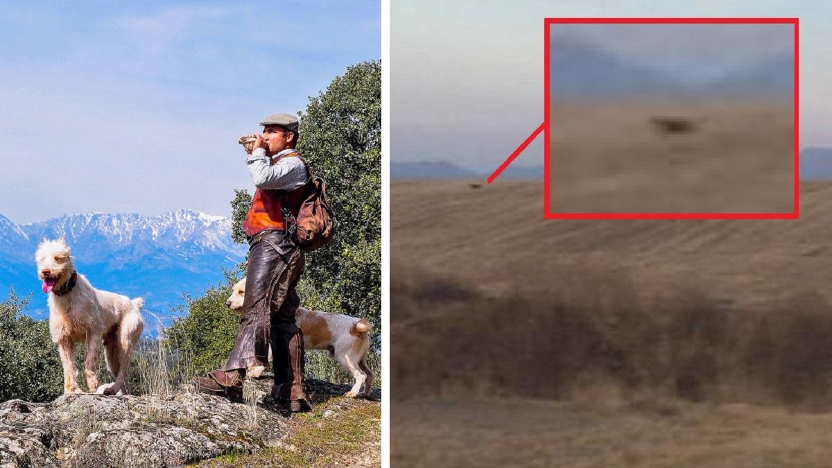 Con cazadores, rehalas y cebo vivo: así planea 'cazar' la pantera de Granada la Guardia Civil