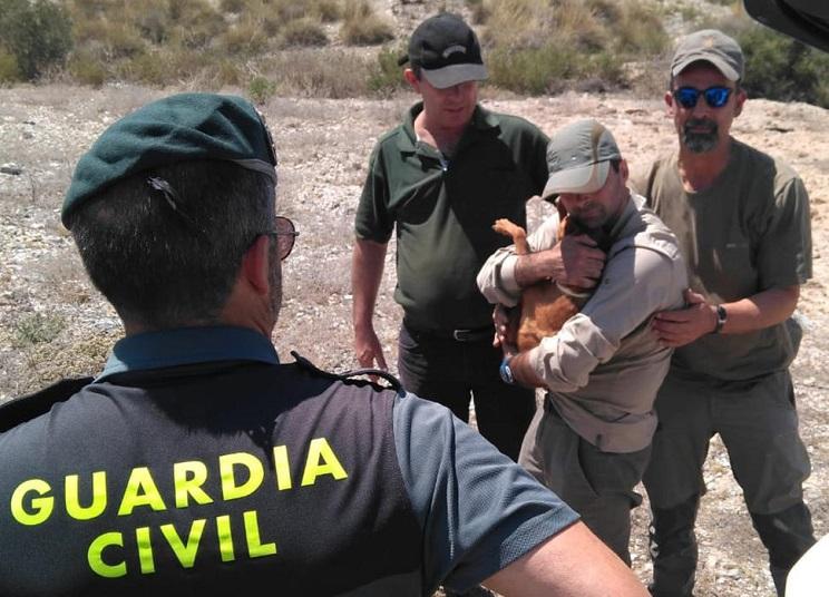 Rescatan a su perro de caza después de que cayera a un pozo de 30 metros