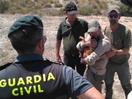 rescate-perro-caza