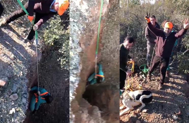 Así rescataron cazadores y rehaleros a un perro que cayó a un pozo en una montería