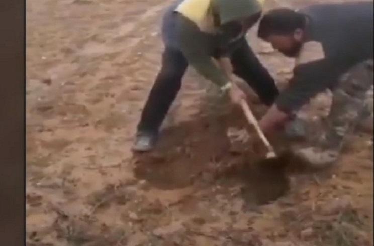 El vídeo de tres agricultores 'sembrando' conejos muertos incendia las redes