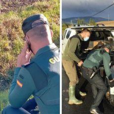 Guardia Civil y forestales atrapan a un jabalí herido y lo llevan a un centro para que se recupere