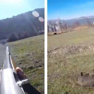 Un disparo a un jabalí muy polémico: ¿Debería haber apretado el gatillo este cazador?
