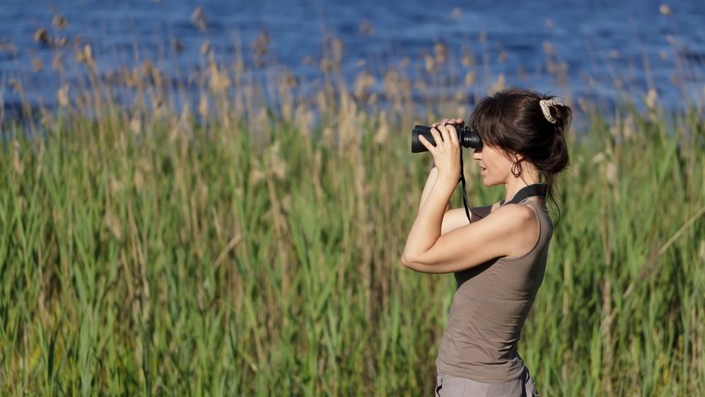 El ecoturismo amenaza la vida salvaje, según la Universidad de Cambridge