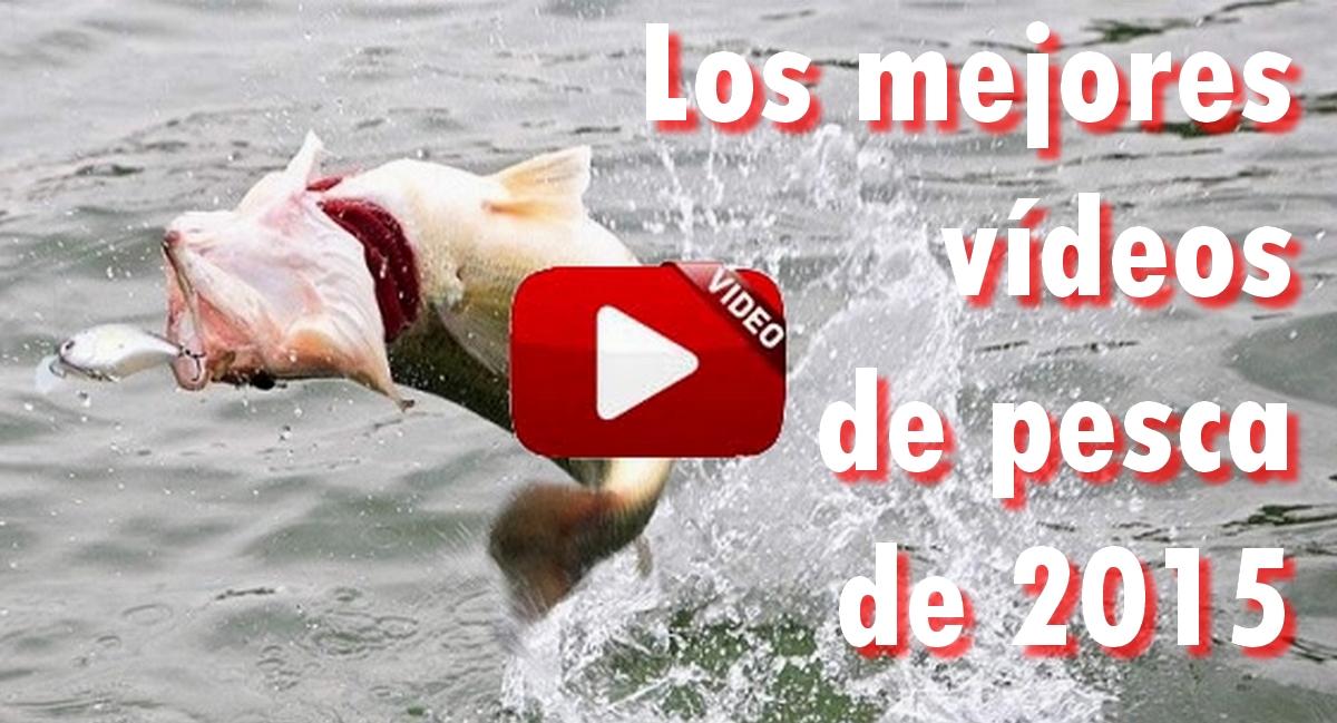 Los 10 mejores vídeos de pesca de 2015