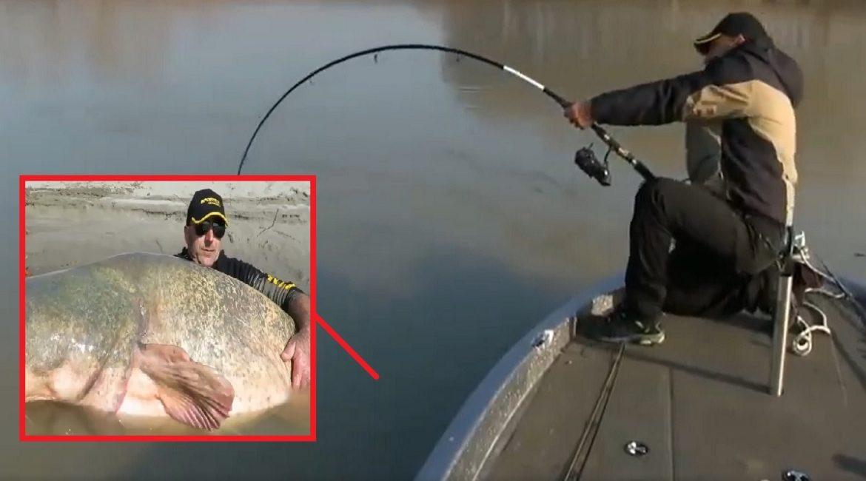 Lanza el anzuelo y pesca un pez del tamaño de un jabalí