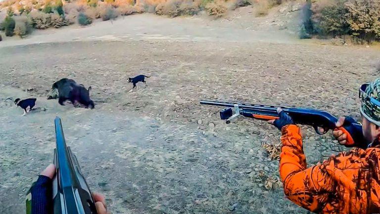 Los dos cazadores apuntan al jabalí entre dos perros. / YouTube