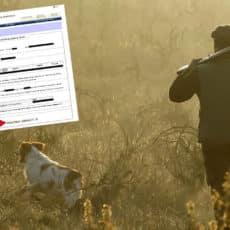 Así puedes solicitar una compensación de tu licencia de caza de CLM tras las nuevas restricciones de movilidad