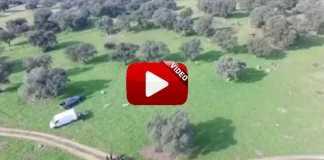 suelta grabada desde dron.