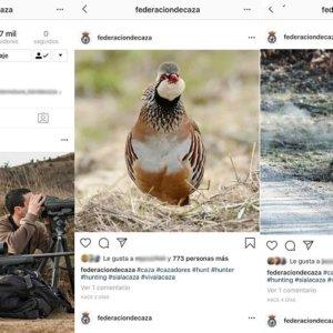 Suplantan la identidad de la Federación de Caza en Instagram con una cuenta falsa