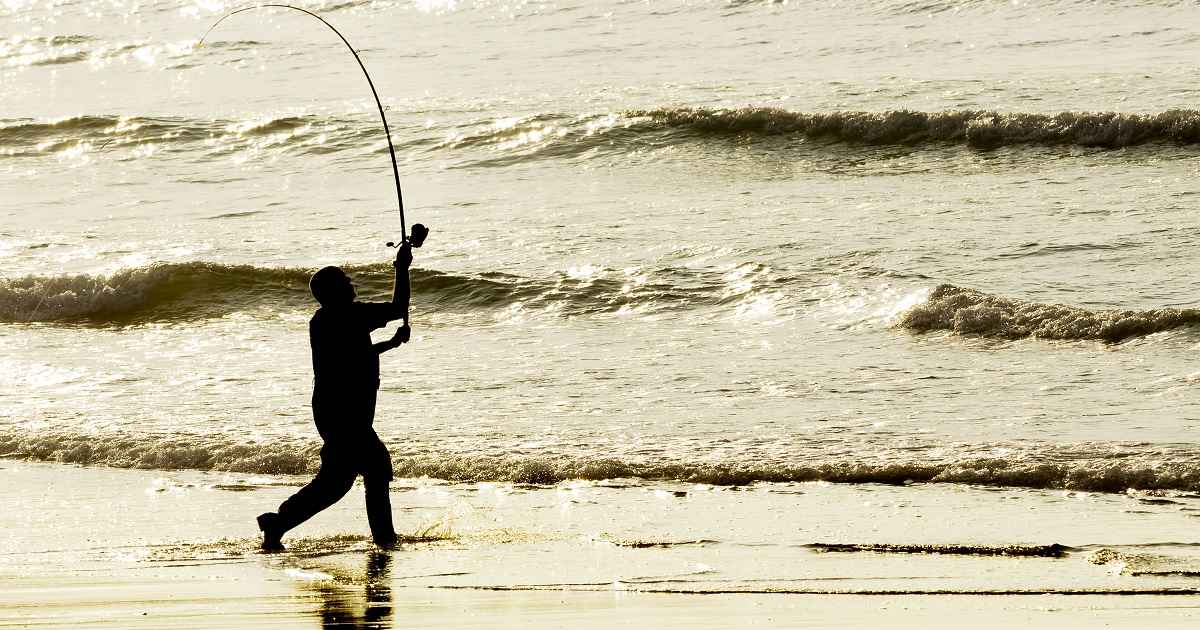 Surfcasting, una modalidad para conseguir para grandes capturas