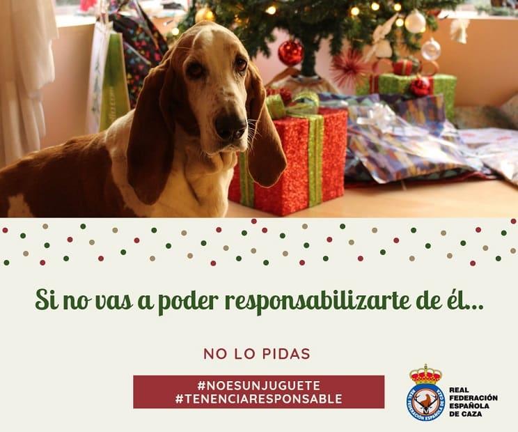 La RFEC lanza una campaña sobre la tenencia responsable de perros y los animalistas la critican