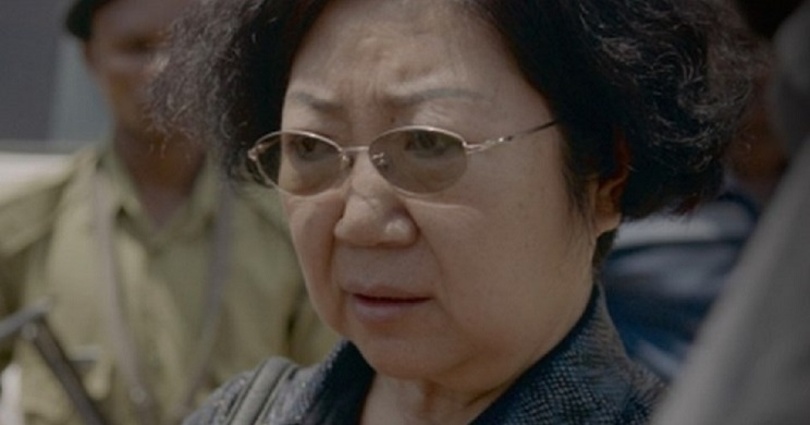 Yang Feng Glan, la 'reina del marfil'. / Elephant League
