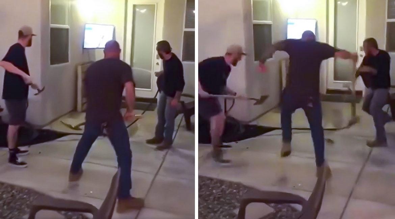 Tres hombres rodean a una rata y su 'valentía' se vuelve viral
