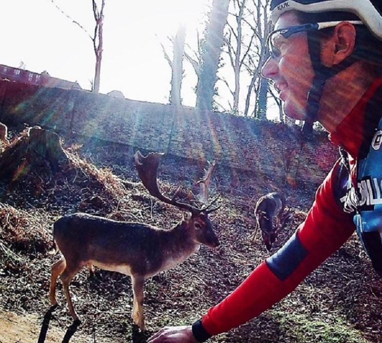 triatleta choca contra ciervo