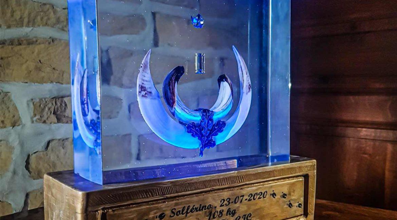 Esta original forma de preparar el trofeo de un gran jabalí sorprende a los cazadores