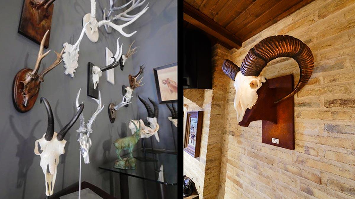 Trofeos de caza integrados con la decoración. /Garoz Art