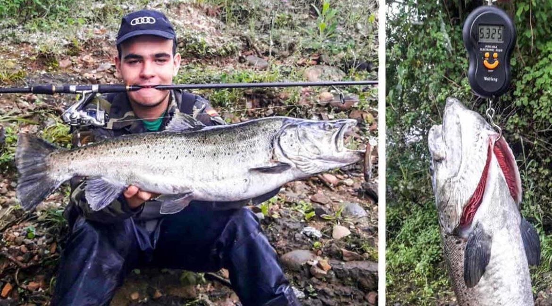 Un joven gallego pesca una descomunal trucha de más de 5 kilos: «Creí que había enganchado una piedra»