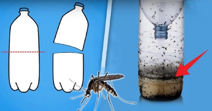 truco mosquitos