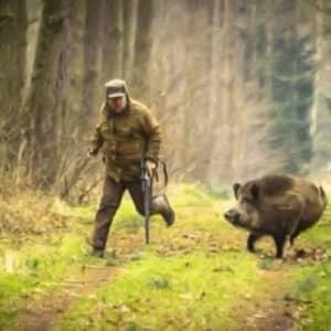 Los 10 ataques de jabalí a cazadores más impactantes