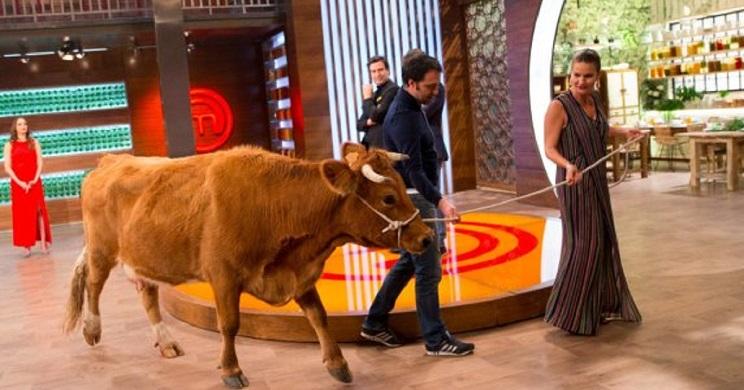 vaca masterchef encuesta