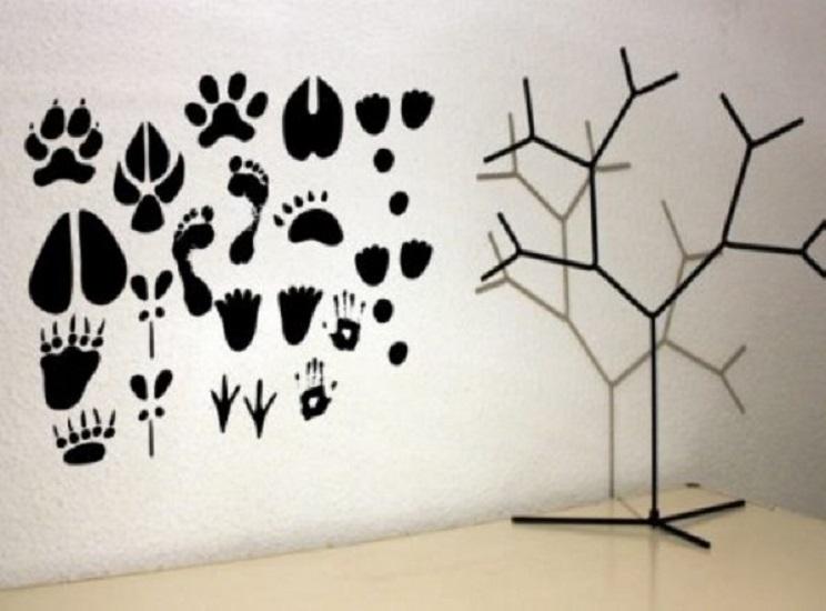 vinilos con huellas y pisadas de animales salvajes