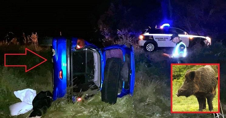 Un joven resulta herido tras estrellarse con un jabalí y volcar su coche