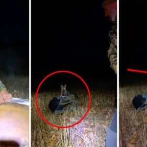 Así reacciona un cazador cuando un zorro le intenta robar la mochila tras cazar un ciervo